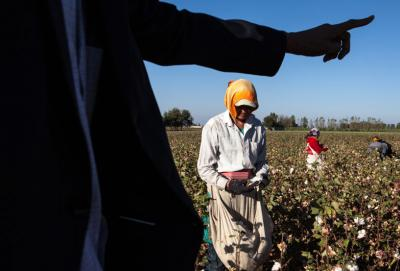 Uzbekistan - forced labour - Photo Anti-Slavery International