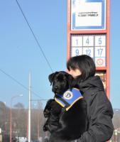 Vychovávateľka so šteniatkom